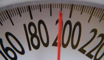 <p style=text-align: justify;>Con el objetivo de determinar si existía una<strong> relación entre la obesidad y los distintos tipos de cáncer</strong>, el <strong><a title=Centro Internacional de Investigación sobre el cáncer (Circ/Iarc href=https://www.iarc.fr/ target=_blank rel=me nofollow>Centro Internacional de Investigación sobre el cáncer (Circ/Iarc)</a></strong>, la <strong>Agencia para el Cáncer de la Organización Mundial de la Salud (OMS)</strong>, realizó una investigación.</p><p></p><p><strong>Lee también</strong><br/><a style=color: #ff0000; text-decoration: none; title=Cáncer de mama: menos riesgo en Latinoamérica href=https://noticias.universia.com.ar/ciencia-nn-tt/noticia/2014/10/23/1113690/cancer-mama-menos-riesgo-latinoamerica.html>» <strong>Cáncer de mama: menos riesgo en Latinoamérica</strong></a><br/><a style=color: #ff0000; text-decoration: none; title=Vaxira: una vacuna para combatir el cáncer de pulmón href=https://noticias.universia.com.ar/ciencia-nn-tt/noticia/2014/06/12/1098688/vaxira-vacuna-combatir-cancer-pulmon.html>» <strong>Vaxira: una vacuna para combatir el cáncer de pulmón</strong></a><br/><a style=color: #ff0000; text-decoration: none; title=Descubren gen del cáncer gástrico que resiste la quimioterapia href=https://noticias.universia.com.ar/ciencia-nn-tt/noticia/2014/04/15/1094867/descubren-gen-cancer-gastrico-resiste-quimioterapia.html>» <strong>Descubren gen del cáncer gástrico que resiste la quimioterapia</strong></a></p><p></p><p>A través de la misma se planteó que<strong> el sobrepeso y la obesidad podrían aumentar el riesgo de contraer cáncer</strong>. Actualmente son las responsables de un 3,6% (481.000 personas) de los nuevos casos de cáncer en adultos en 2012.</p><p></p><p>Los responsables de este estudio partieron de la base de datos de Globocan, sobre la incidencia y la mortalidad por cáncer en 184 países.</p><p></p><p style=text-align: justify;>Otra de las conclusiones interesantes que arrojó el estudio es que el víncu