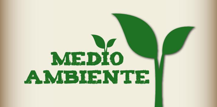 Los españoles cada vez están más concientizados sobre el cuidado del medio ambiente