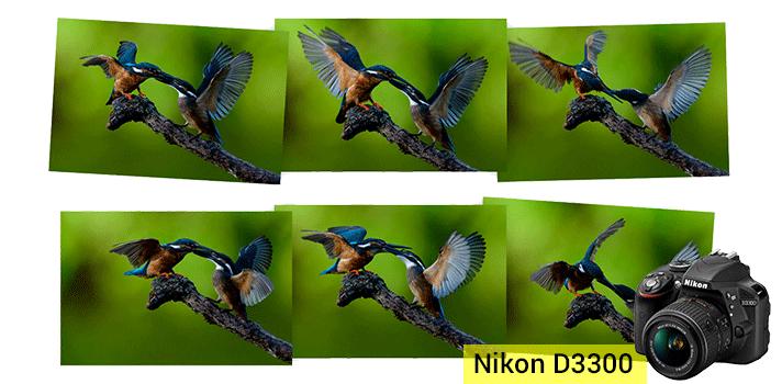 Nikon D3300 - Cámara réflex digital de 24.2 Mp