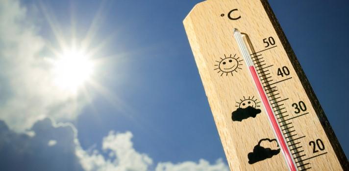 Calor y alimentos, cuidados para evitar intoxicaciones