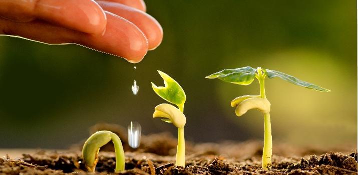 El amor por la naturaleza puede convertirse en una profesión rentable