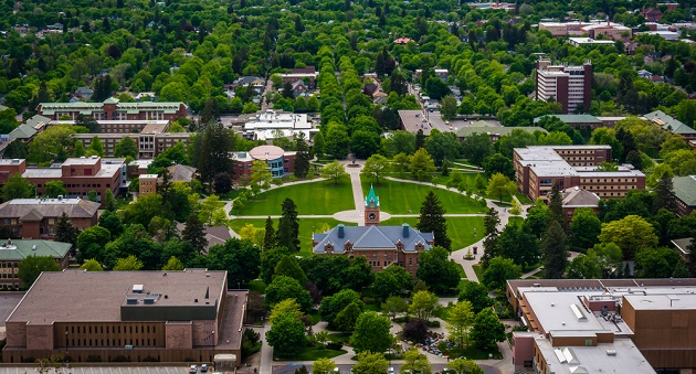 Resultado de imagen para campus universitarios